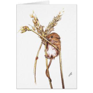 De Muis van de oogst Briefkaarten 0
