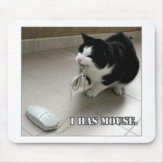 De muisstootkussen van de kat muismatten