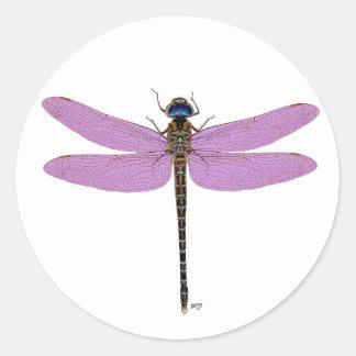 De multi Libellen van de Kleur Ronde Sticker