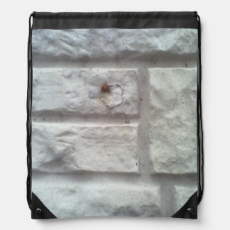 De Muur van de steen Rugzakken