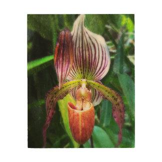 De muurkunst van de orchidee op hout hout afdrukken