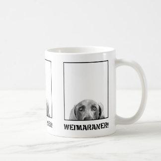 De Natie van Weimaraner: Weimaraner in een Mok van