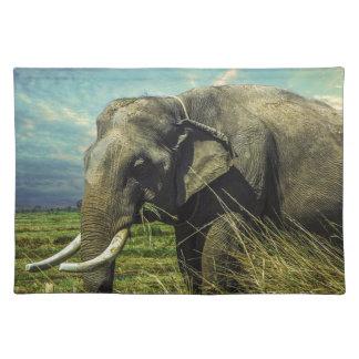 De Natuur van de olifant Placemat
