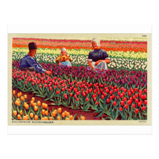 De Nederlandse Kitsch Amsterdam van Tulpe van Briefkaart