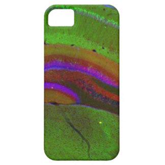 De neuronen van Hippocampal Barely There iPhone 5 Hoesje