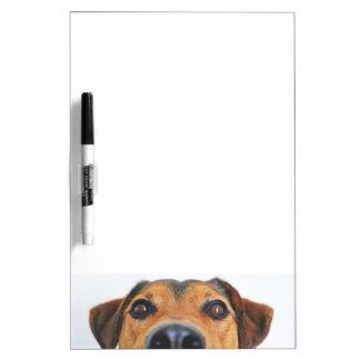 De neus van de aandachtige hond whiteboards