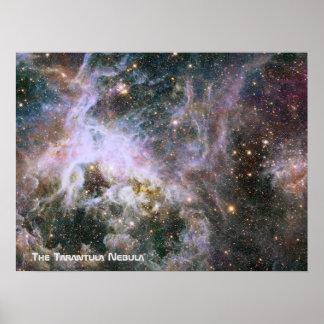 De nevel van de Tarantula - Lijst 4 met Titel Poster