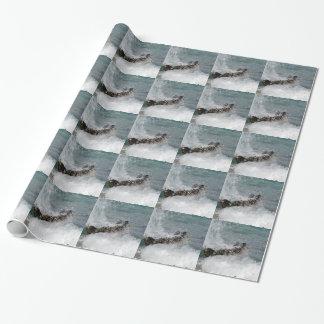 De Nevel van het zee Inpakpapier
