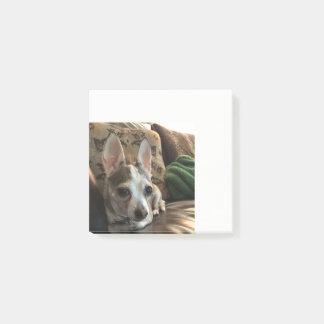 De Nota's van de Post-it van de Hond van Chihuahua Post-it® Notes