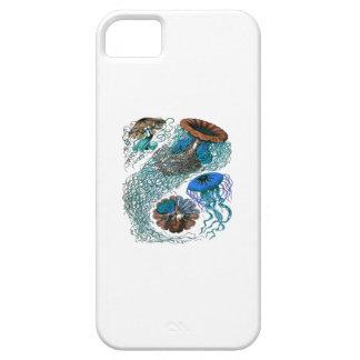 DE OCEAANIMPULS BARELY THERE iPhone 5 HOESJE
