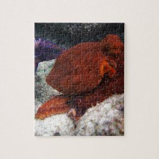 De Octopus van Hawaï Puzzels