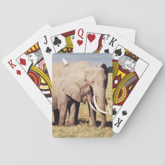 De olifant van de moeder met jongelui pokerkaarten