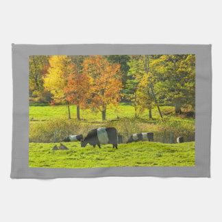 De omgorde Koeien van Galloway op het Boerderij Keuken Handdoek