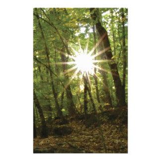 De onderbrekingen van de zon door bos briefpapier