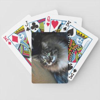De onweerstaanbare Speelkaarten van de Fiets van Poker Kaarten
