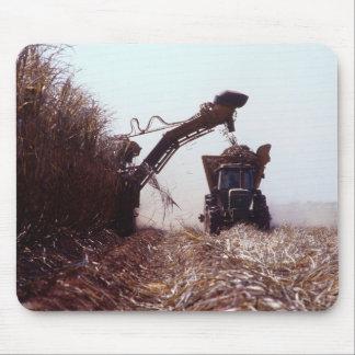 De oogst van het suikerriet muismat