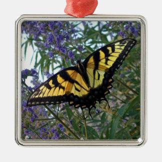 De oostelijke Vlinder van Swallowtail van de Zilverkleurig Vierkant Ornament