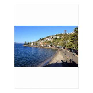 De oosterse Haven van Wellington van de Baai Briefkaart