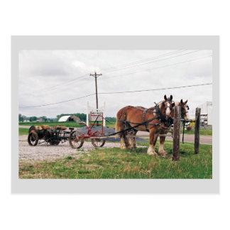 De Opbrengst van de Acres van Amish Briefkaart