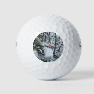 De openlucht Decoratie van het Riet van het Snoep Golfballen