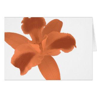 De oranje Kaart van de Orchidee