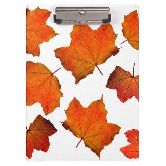 De oranje/Rode Bladeren van de Herfst Klembord