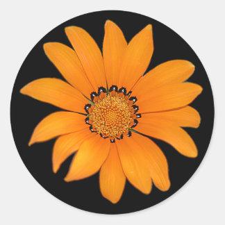 De oranje Sticker van de Bloem