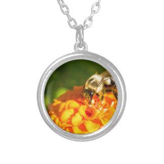 De Oranjegele Bloem van de Bij van de honing met Zilver Vergulden Ketting