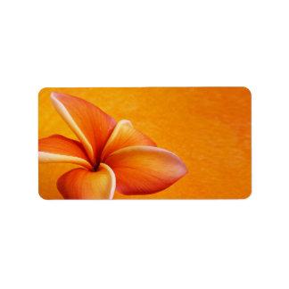 De oranjegele Oranje Achtergrond van de Bloem Etiket