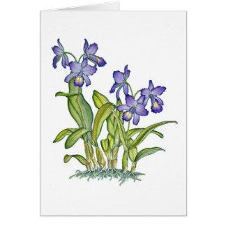 De Orchidee van Cattleya Kaart
