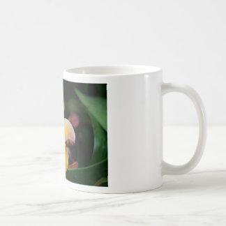 De Orchidee van de zonsondergang Koffiemok