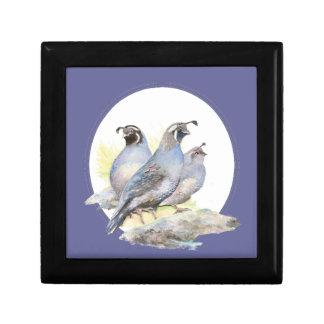 De originele Vogel van de Kwartels van Californië  Decoratiedoosje