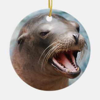 De Ornamenten van de Zeeleeuw van Californië