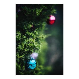 De Ornamenten van Kerstmis Foto Kunst