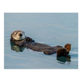 De otter die van het zee op terug in oceaan briefkaart