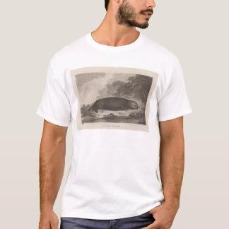 De otter van het zee, Brits Colombia T Shirt