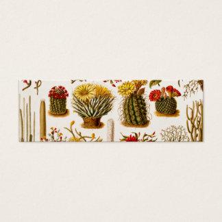 De Oude BloemenIllustratie van de vintage van 1911 Mini Visitekaartjes