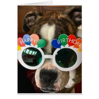 De oude Kaart van de Verjaardag Dawg