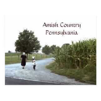 De PA van Pennsylvania van het Land van Amish Briefkaart