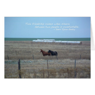 De Paarden van Kansas in Weiland Wenskaart
