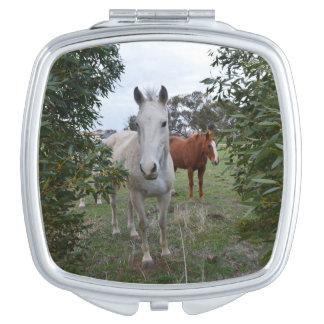 De Paarden van Peekaboo, Makeup Spiegels