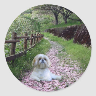 De Paarse Bloemen van de Sticker van Tzu van Shih