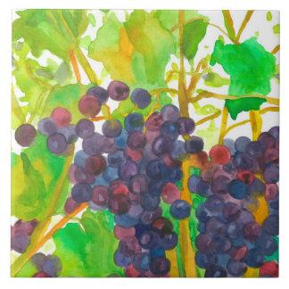 De paarse Druiven van de Wijn van de Waterverf Keramisch Tegeltje