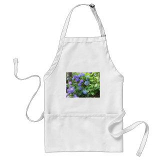 De paarse en blauwe bloemen van de Hydrangea Standaard Schort