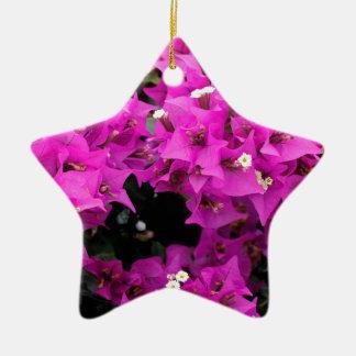 De paarse Fuchsiakleurig Achtergrond van Keramisch Ster Ornament