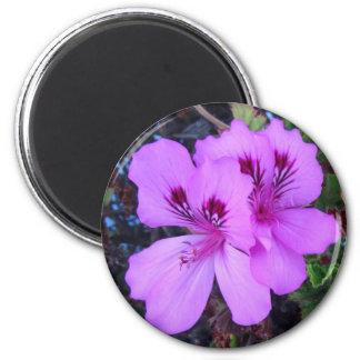 De paarse Magneet van de Keuken van Bloemen