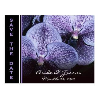 De paarse Orchideeën bewaren de Briefkaarten van