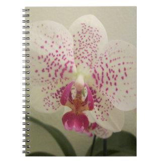 De Paarse Plonsen van de orchidee Notitieboek