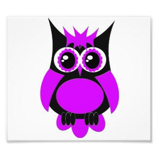 De paarse Punk Uitbreiding van de Foto van de Uil