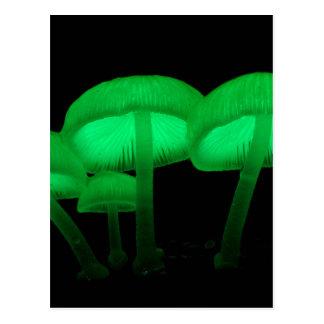 De Paddestoelen van het neon Briefkaart